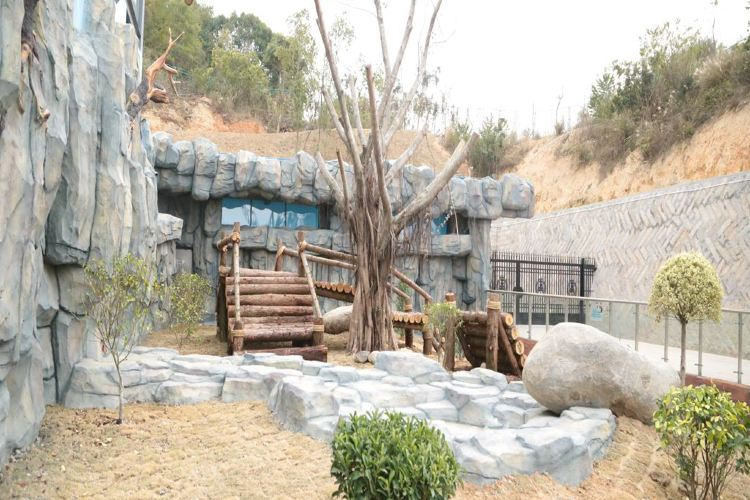 Quanzhou Wildlife Zoo (Quanzhou Wildlife World)1