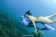 我的泰国涛岛—Aida新人类自由潜