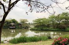 广州海珠湖公园