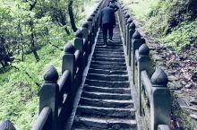 去了一趟武当山。门票245,缆车上90下80。