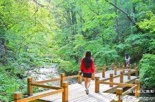 辉南吊水壶森林湖泊瀑布给你一个清凉的夏日