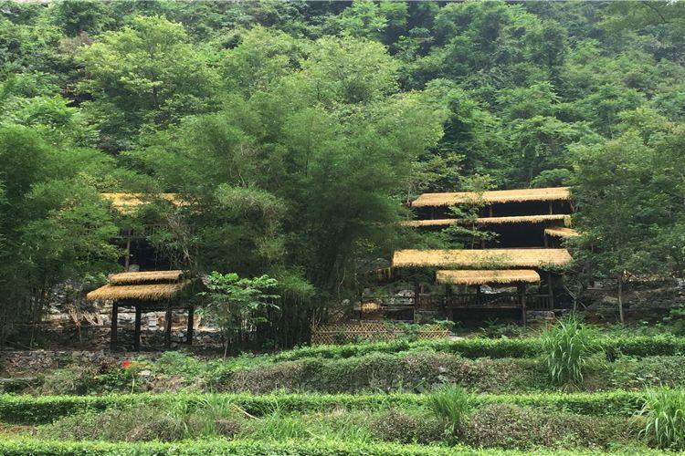 Xiangbeishiwaitaoyuan Sceneic Area2