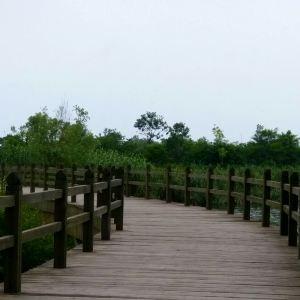 桑沟湾湿地公园旅游景点攻略图