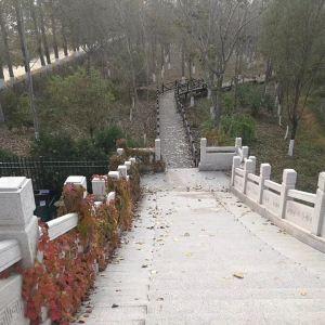 汉石桥湿地旅游景点攻略图