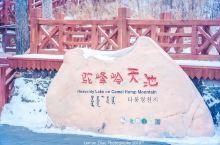 驼峰岭天池