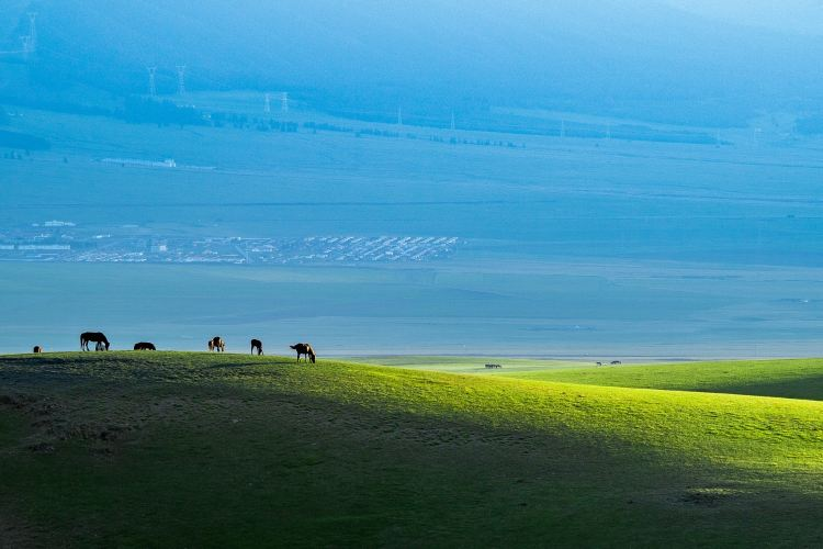 Balikun Grassland4