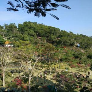 梅海岭旅游景点攻略图