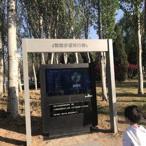 海淀公园旅游景点攻略图