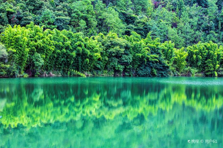 "Shunan Zhuhai (""South Sichuan Bamboo Sea"") National Park2"