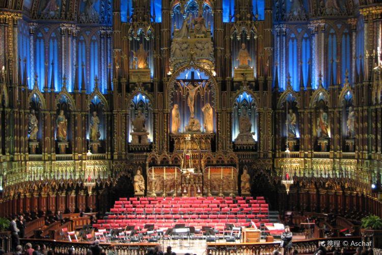 Notre Dame Basilica1