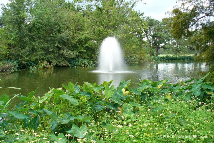 Audubon Park1
