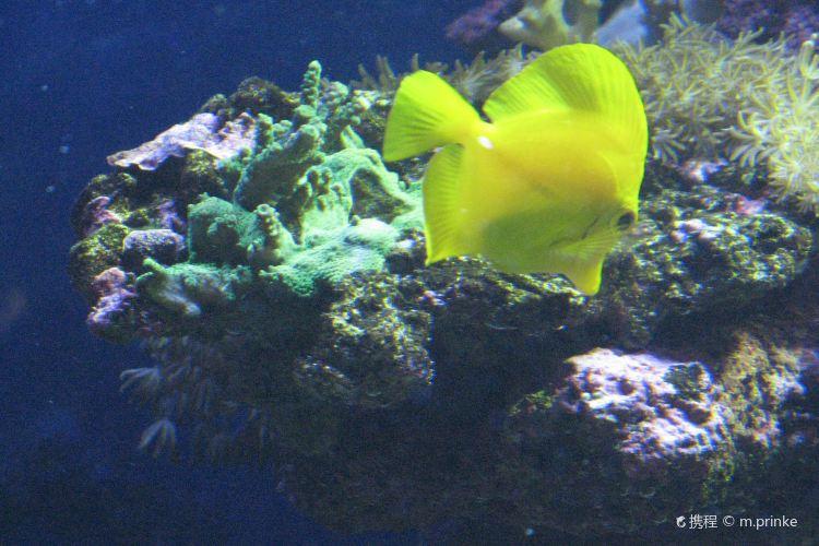 Aquaria Vattenmuseum4