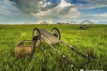 穿越大兴安岭畅游呼伦贝尔大草原9日深度游
