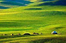 2019内蒙古呼市四大区景点大评比:亲子商务游哪个景点最值得去?