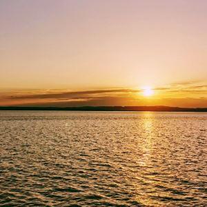 黄河滩岛旅游景点攻略图