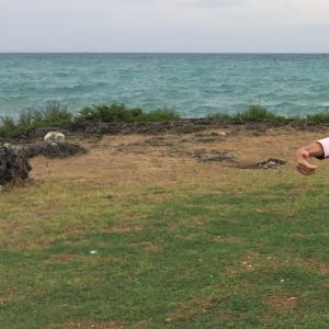 Paradise海滩旅游景点攻略图