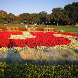 斯坦福大学旅游景点攻略图