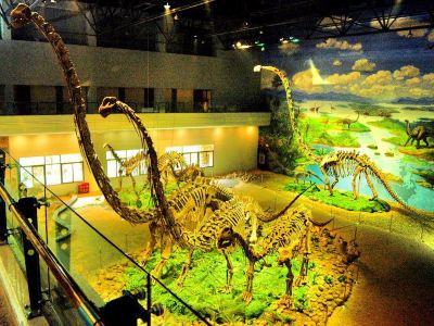 自貢恐龍博物館