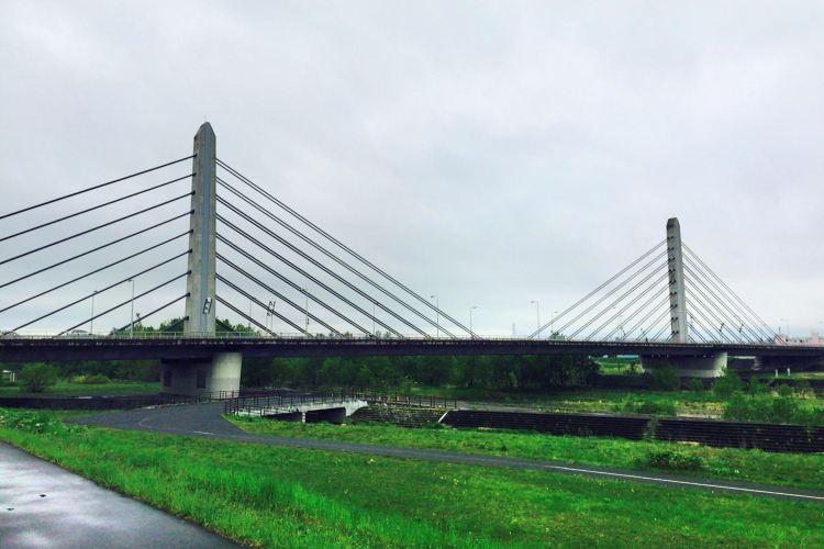 Twin Harp Bridge