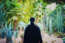 马拉喀什里的YSL花园!