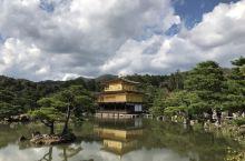 京都金阁寺 奈良公园