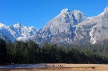 看云杉坪上的則峰 沿白水河遊藍月谷 玉龍雪山分很多景區,就是索道也分三處,包括雲杉坪, 牦牛坪 ,大