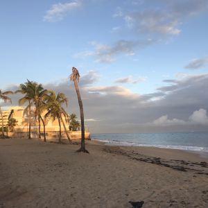 Ocean Park旅游景点攻略图