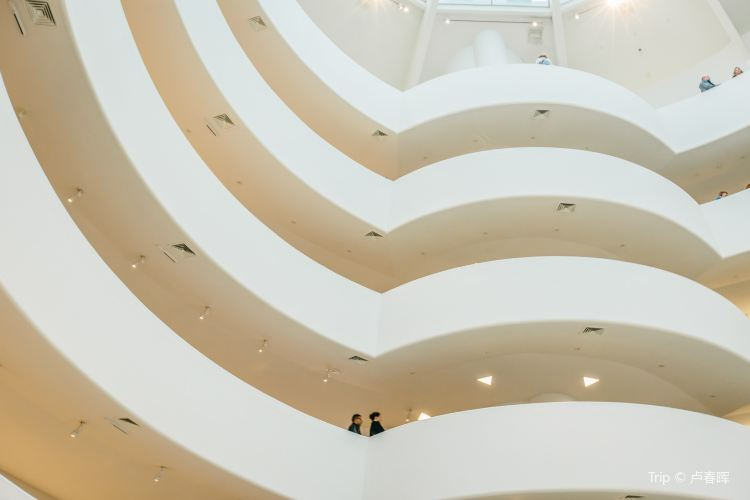 Solomon R. Guggenheim Museum4