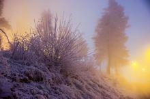 挪威的森林遇见雪和光头