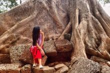 #塔布隆寺#被雨林吞噬的吴哥