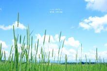 新荣之丘,一个随便拍拍就是windows桌面的地方
