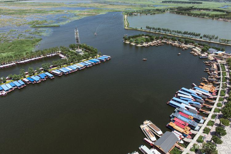 Baiyang Lake4