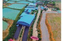 横县六景泉水生态园