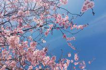 充满春天气息的小城