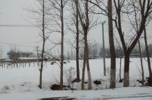 雪中的舞阳