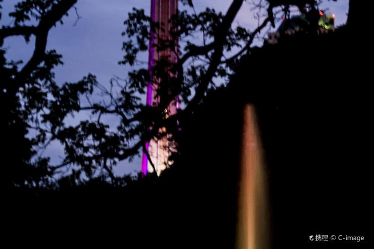 Skylon Tower2