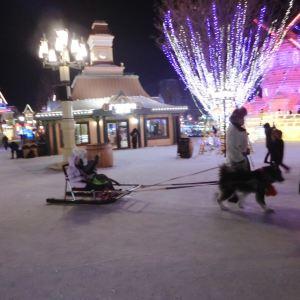 哈尔滨融创乐园冰雪奇园旅游景点攻略图