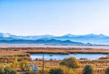 北疆环线游,去看新疆醉美的金秋