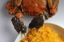 想要尝试上海滩最鲜滋味?必去这家名扬海内外的蟹宴老字号!