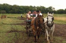 【南美四国行25】潘帕斯草原的古农庄
