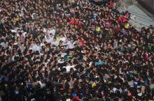 过大年----潮汕之文化奇旅 正月民俗活动