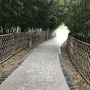 春晖园温泉旅游景点攻略图