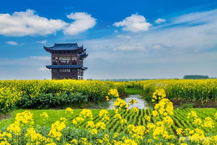 Qianduo (Raised Wetland Fields) Scenic Area1