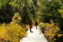 苏木山视频