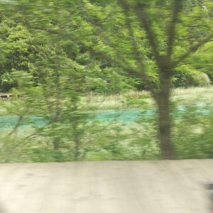 芦苇海旅游景点攻略图