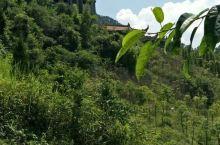 江津四面山也有少林寺,可住宿,吃斋饭,念经,拍照