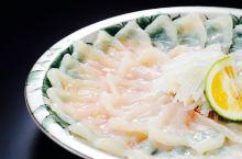 [吃在东京]怎么吃才不会死!舌尖上的河豚料理~