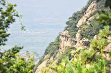 这座山的植被覆盖面积90%以上,还经常出现云海,美景不输黄山