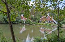 东平国家森林公园