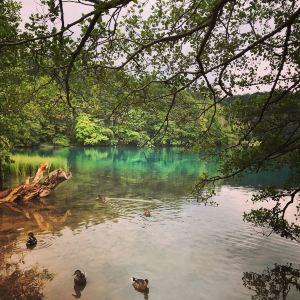 Kozjak湖旅游景点攻略图